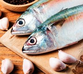 Морская рыба оптом